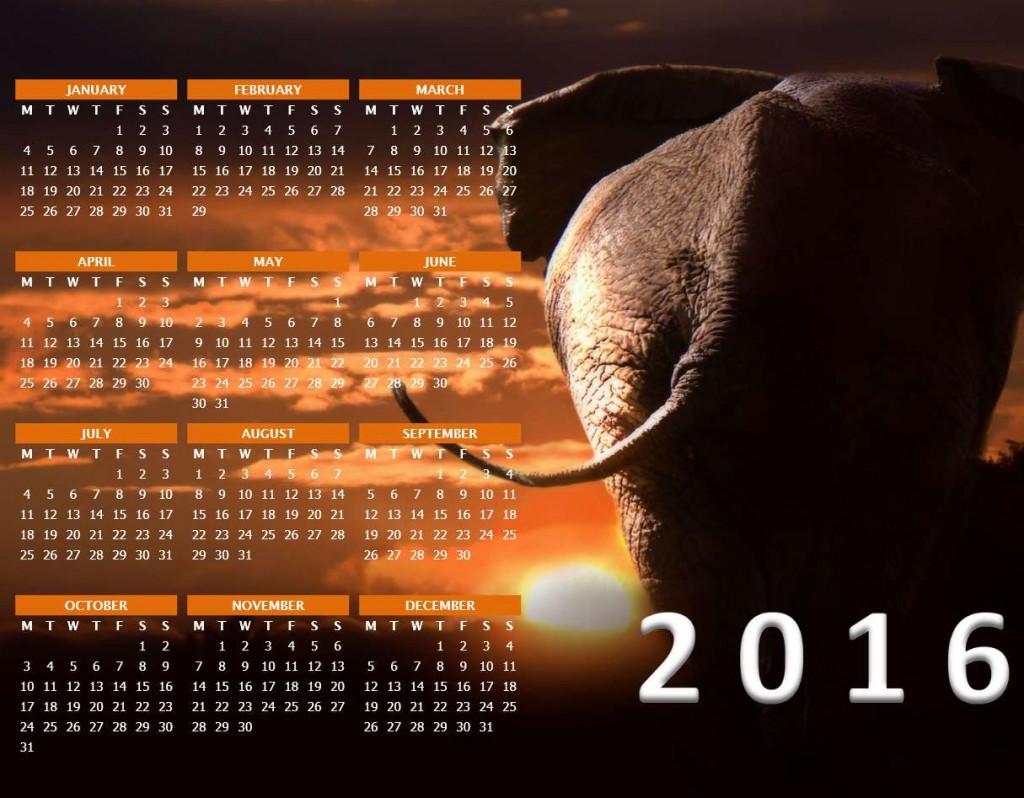 2016 Photo Calendar - Word Template