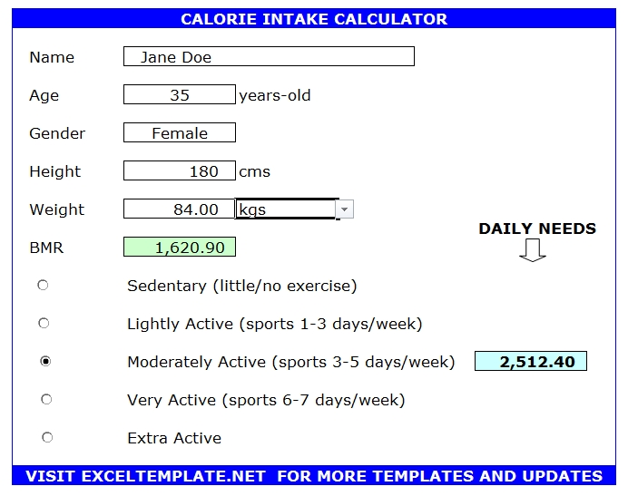 Calorie Intake Calculator (Excel/Calc)